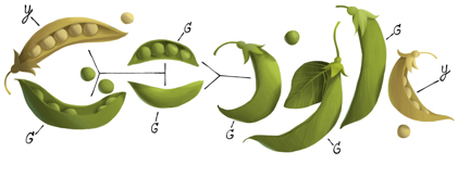 Google Doodle on Gregor Mendel's 189th Birthday