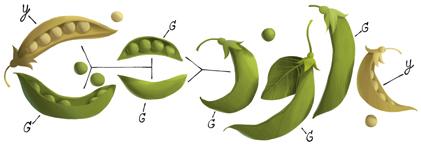 Google Doodle on Gregor Mendel's 189th Birthday